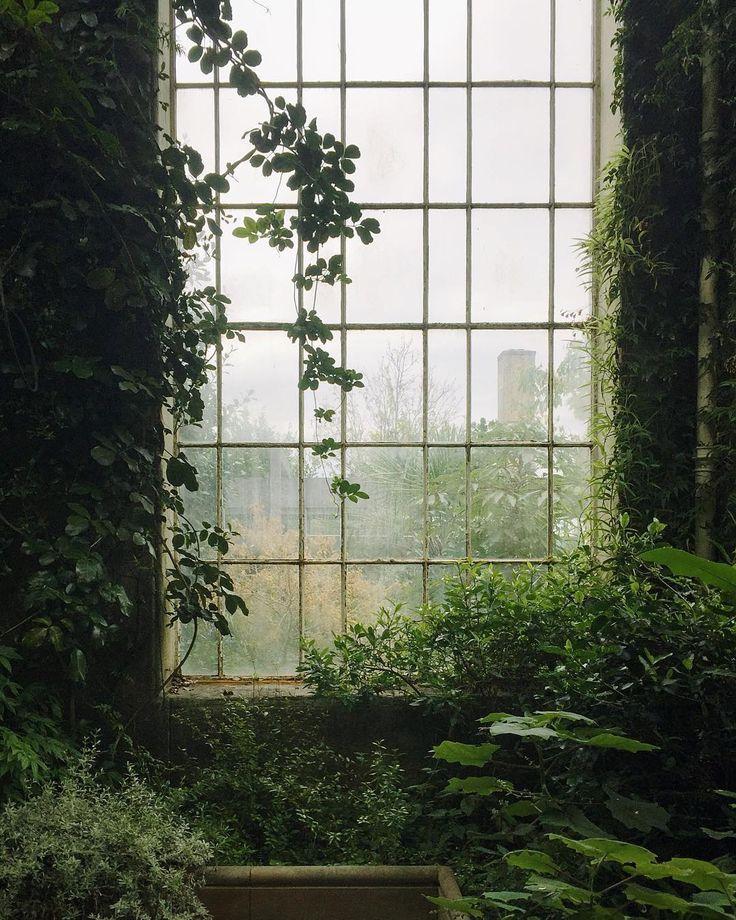 Natur im Innenraum // Fotografie von Haarkon / India & Magnus (@haarkon_) • In… – Anna Dreher