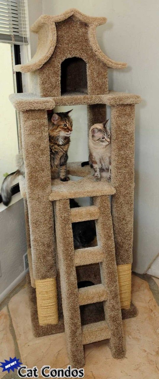 Designer cat pagoda tree pagoda cat scratcher cat pagoda house cat condos kitty things - Designer cat scratcher ...
