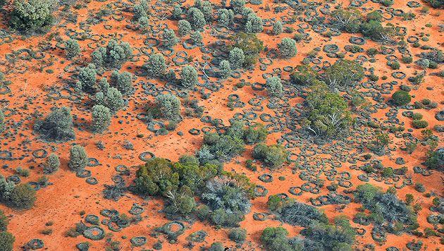 Photo de couverture. #australia #landscape #aborigene #aboriginal #inspiration