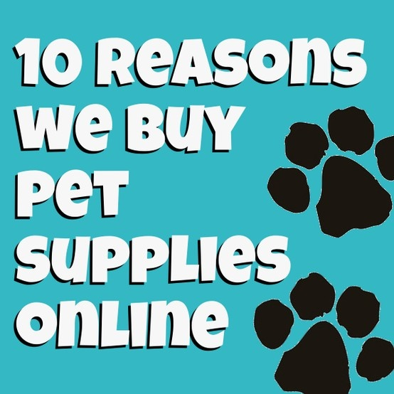 Ever wonder why people love shopping for pet supplies online? Kolchak Puggle is sharing a few reasons from the dog's perspective.