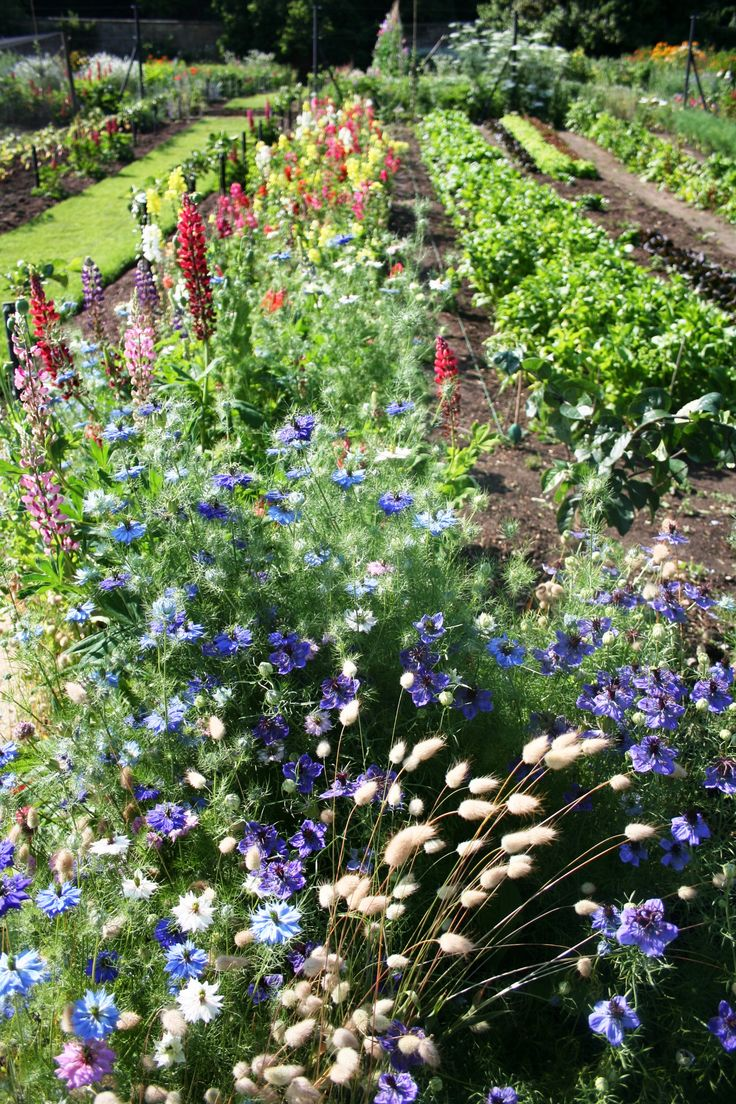 best images about the kitchen garden gardens at gravetye the gorgeous flower arrangements you see around the manor are hand cut from
