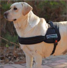Doprava zadarmo pes postroj S-XL veľký pes postroj polstrovaná silný hanress pre psov Nylon Retractable pre malé i veľké plemeno (Čína (pevninská časť))