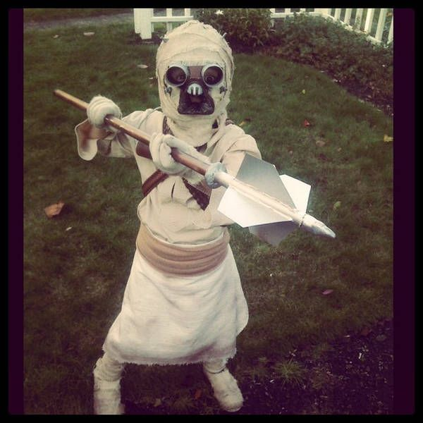Tusken Raider kids' costume - Boing Boing  These parents win at parenting!