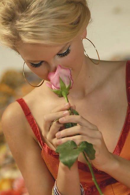 Galeria de fotos para tu blog o webpage: Flowers-Rosas-Flores-Pictures