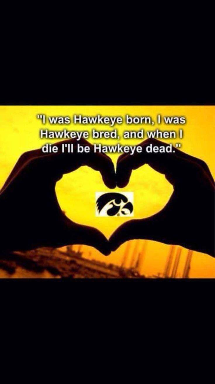 80 best Iowa Hawkeye images on Pinterest | Iowa hawkeyes, Iowa ...