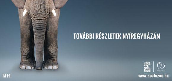 Kreatív Online - Prömier: a Nyíregyházi Állatpark kampánya
