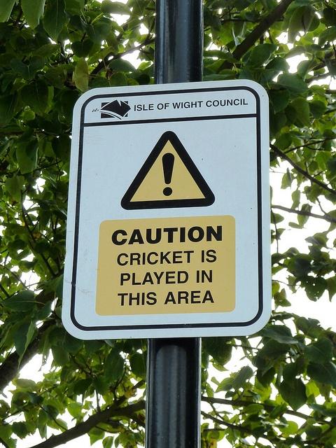 cricket. warned.