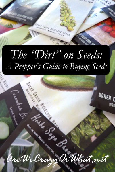 """The """"Dirt"""" on Seeds: A Prepper's Guide to Buying Seeds - Are We Crazy, Or What?"""