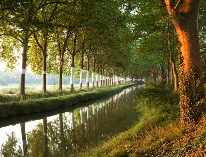 Canal du midi        Dimitri Xenakis  Chemin(s) d'eau. Parcours artistique le long des berges du canal du Midi. Toulouse.