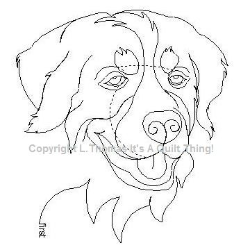 Bernese Mountain Dog-L01074