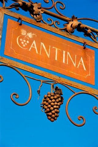 Visit to our winery Cortona. Tuscany. Winelovers
