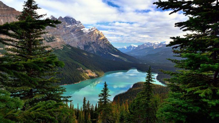 Скачать обои Банф, Peyto Lake, горы, деревья, Alberta, Canada, озеро, Альберта, Banff National Park, лес, Mount Patterson, скалы, Канада, облака, раздел пейзажи в разрешении 1920x1080