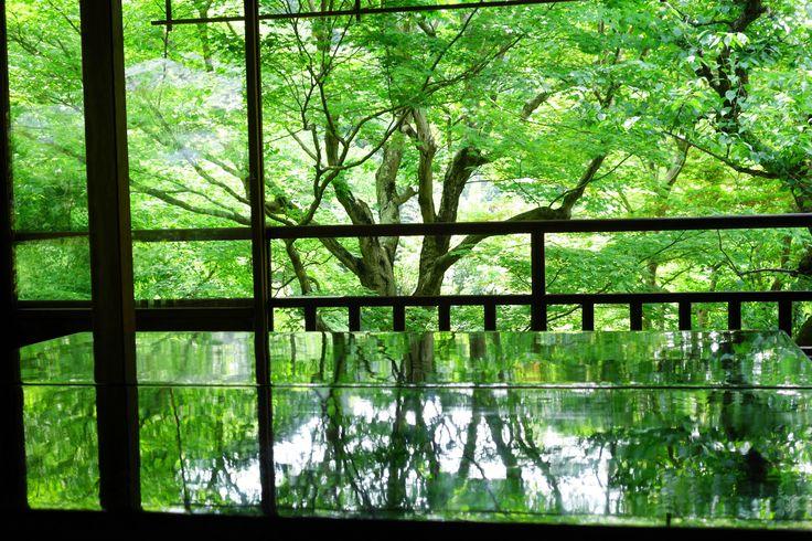 kyoto rurikouin 瑠璃光院