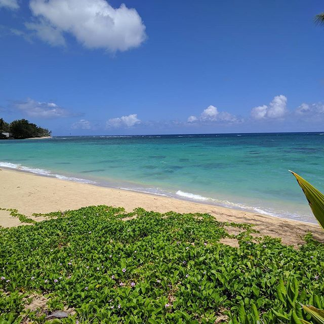 Makaha hawaii secret beach :) Sign up for our mailing list at imitours.com for special offers