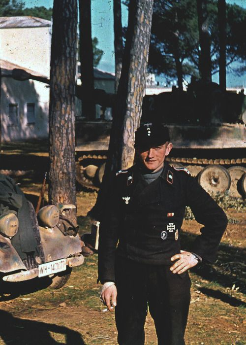 Tiger I and panzer soldier