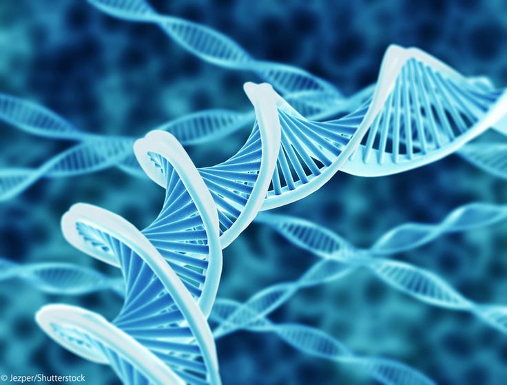 注目の若手計算生物学者・仲木竜さんに、ゲノムが原因で病気になる理由をはじめ、その実態について分かりやすく教えてもらいました。