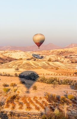 Serene balloon ride in Kappadokien. Lovely pastell colors. Photographer Mahshid Rasti. Available as poster and laminated picture at printler.com, the marketplace for photo art.