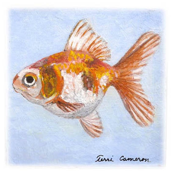 17 best images about art fish on pinterest watercolor for Calico koi fish