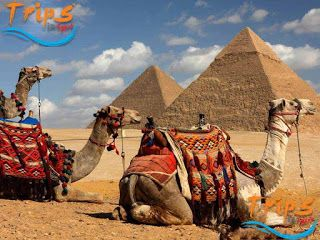 Tours from Marsa Alam | Luxor Tours from Marsa Alam | Pyramids Tours from Marsa Alam: Cairo and Luxor tours from Marsa Alam | 2 day trip...