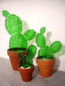 Cactus: Perfect for here in Arizona
