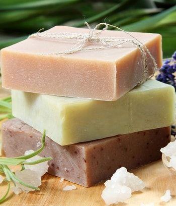 Remplacer l'insecticide anti-puceron par du savon noir : Adieu pesticides ! Des alternatives bios pour le jardin - Linternaute