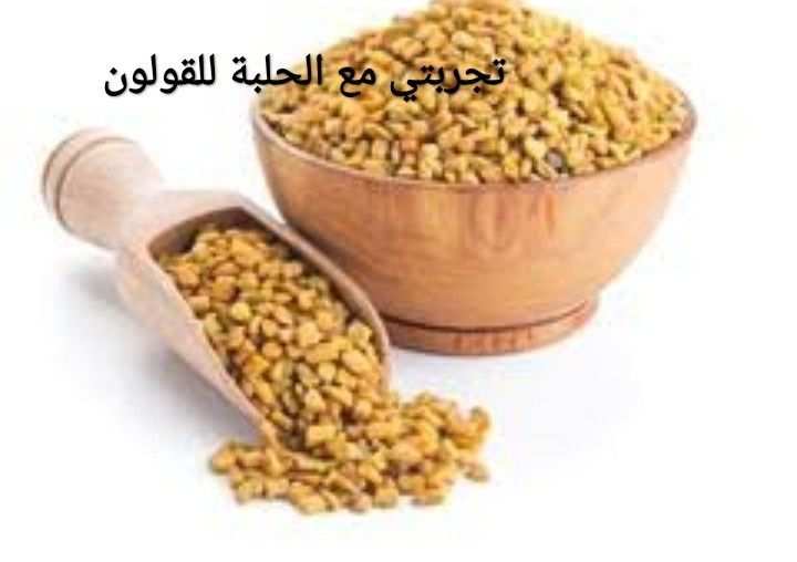 تجربتي مع الحلبة للقولون Fenugreek Seeds Herbs Spices Fenugreek
