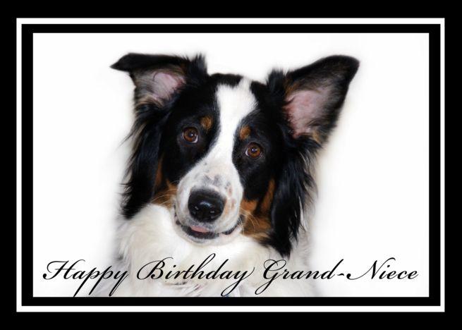 Australian Shepherd Happy Birthday Grand Niece Card Ad Sponsored Happy Shepherd Australian Bi Happy Birthday Mother Mom Cards Happy Birthday Cousin