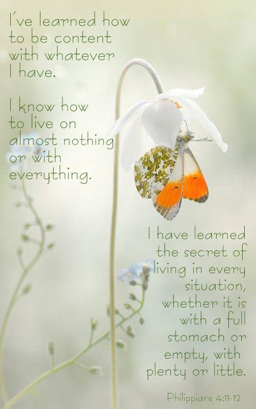 Philippians 4:11-12