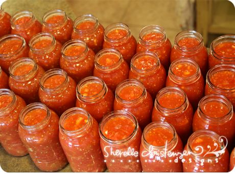 tomato recipes: stewed tomatoes, pizza sauce, pasta sauce, & salsa