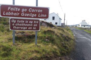 The Irish language : A beginner's guide