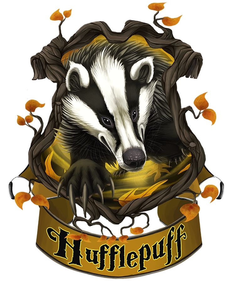 359 Best Hufflepuff Badger Images On Pinterest Badger
