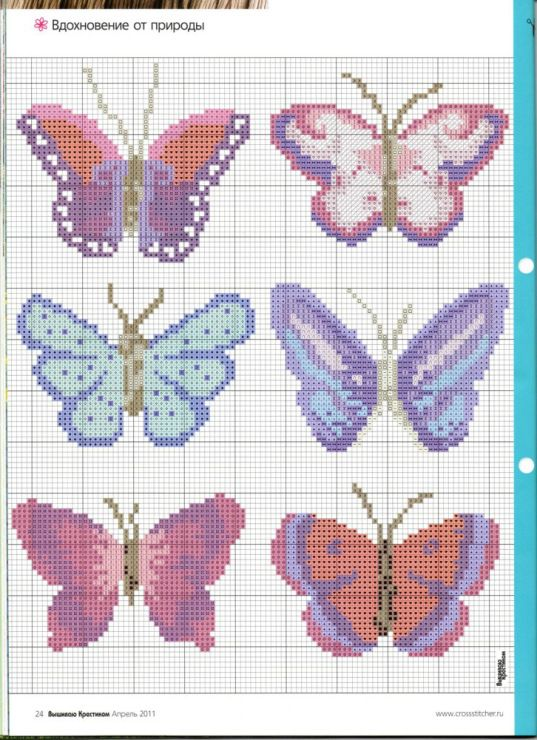 Gallery.ru / Фото #57 - бабочки - irisha-ira