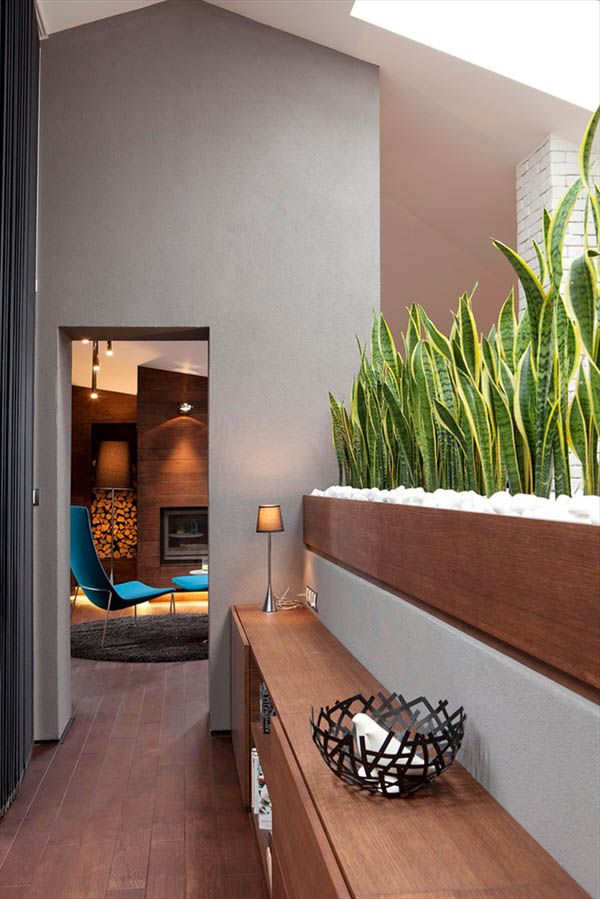 Loft-in-Bansko-by-Fimera-Design-Studio-10- This half wall with stately mil tongue plant- love!