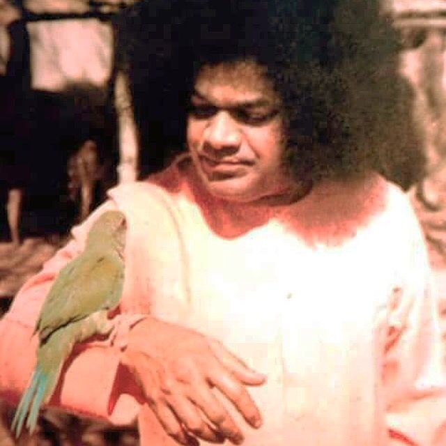 """Forget the harm that anyone has done to you, and forget the good that you have done to others. If wealth is lost, nothing is lost. If health is lost, something is lost. If character is lost, all is lost."" ~ Sri Sathya Sai Baba  #SathyaSai"
