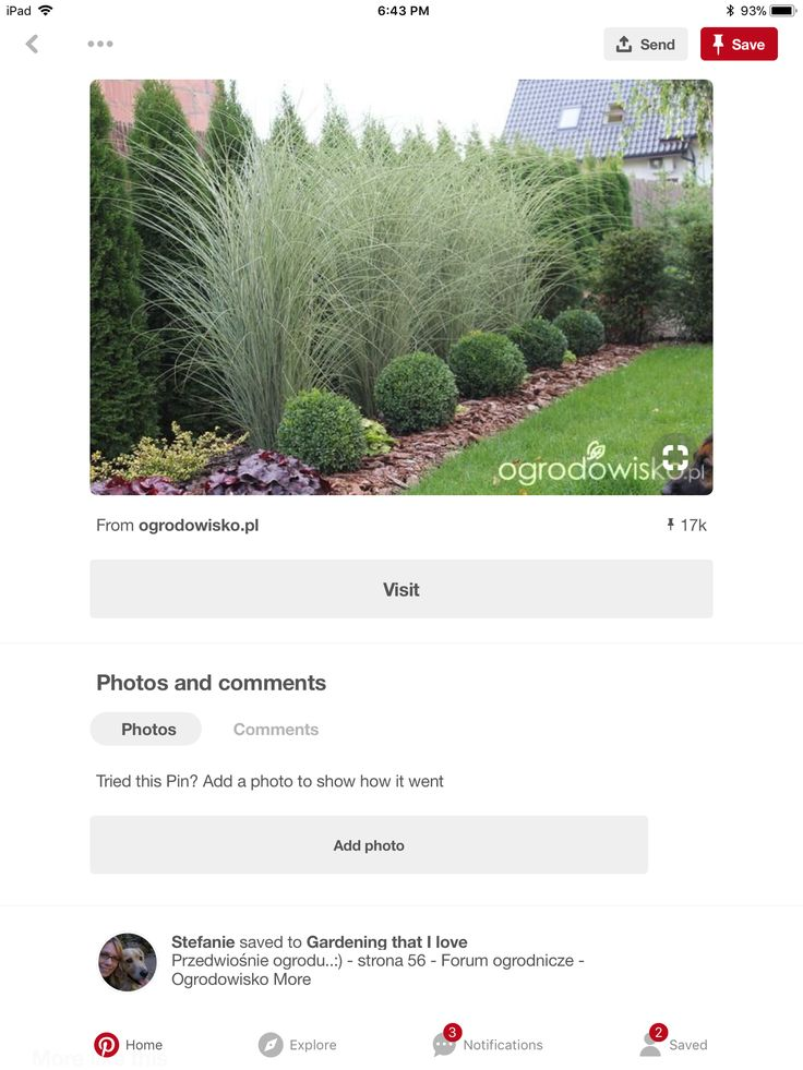 Pin by Carrie on Home Photo, Plants, Visiting