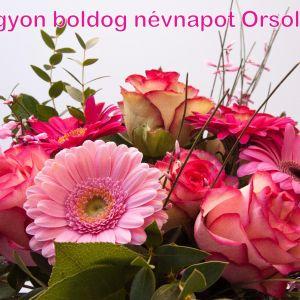orsolya-sok-sok-boldog-nevnapot