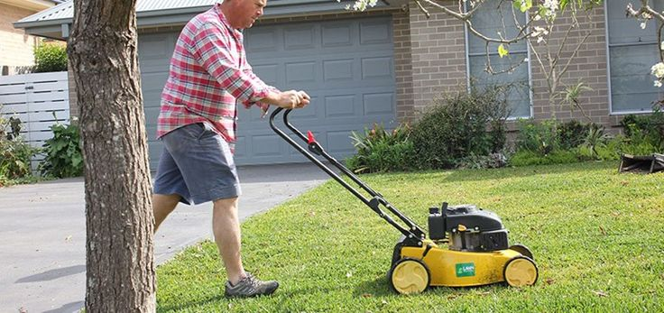 Mower Hights | Lilydale Instant Turf | Love your lawn | Great grass | Lily & Dale | Follow us | Garden Tips & Advice | Contact us | Lawn Solutions Australia