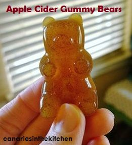 2 cups organic Apple Cider 3 Tablespoons Gelatin Simmer the cider down to 1 cup liquid. Thoroughly mix in your gelatin until there are no more lumps. Let cool almost to room temperature and pour in...