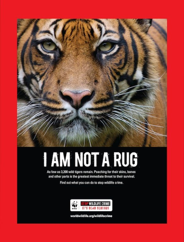 World Wildlife Fund posters.