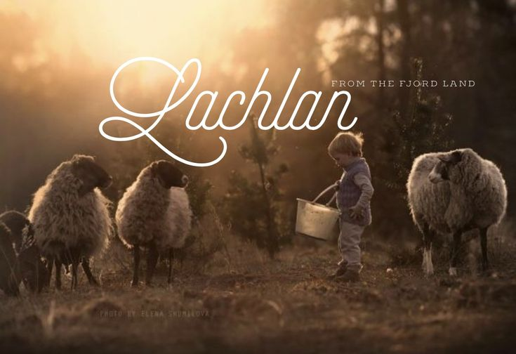 Lachlan, meaning: from the fjord-land, scottish names, L names, boy names, names that start with L , ttc, middle names, L boy names, male names, unique boy names, unique baby names, strong names, ( photo credit: Elena shumilova photography)