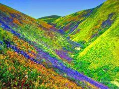 Resultado de imagen para montañas de colores en peru