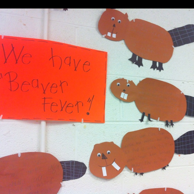 Beavers for our pond habitat unit. They wrote true facts on the body.