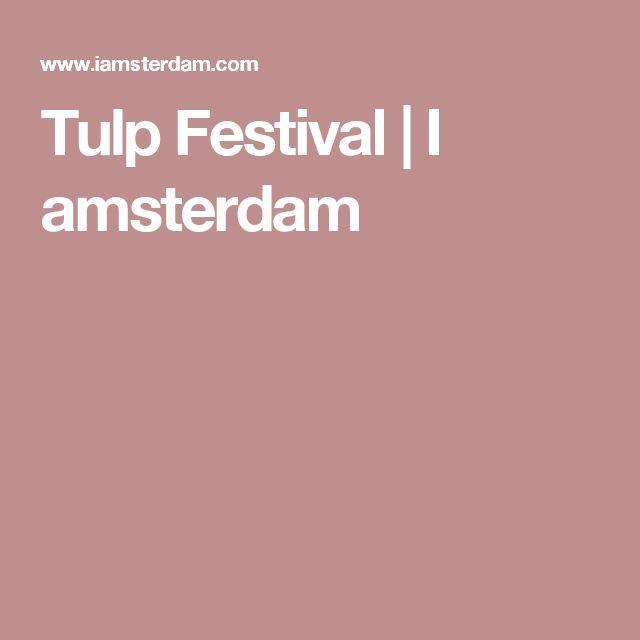Tulp Festival | I amsterdam