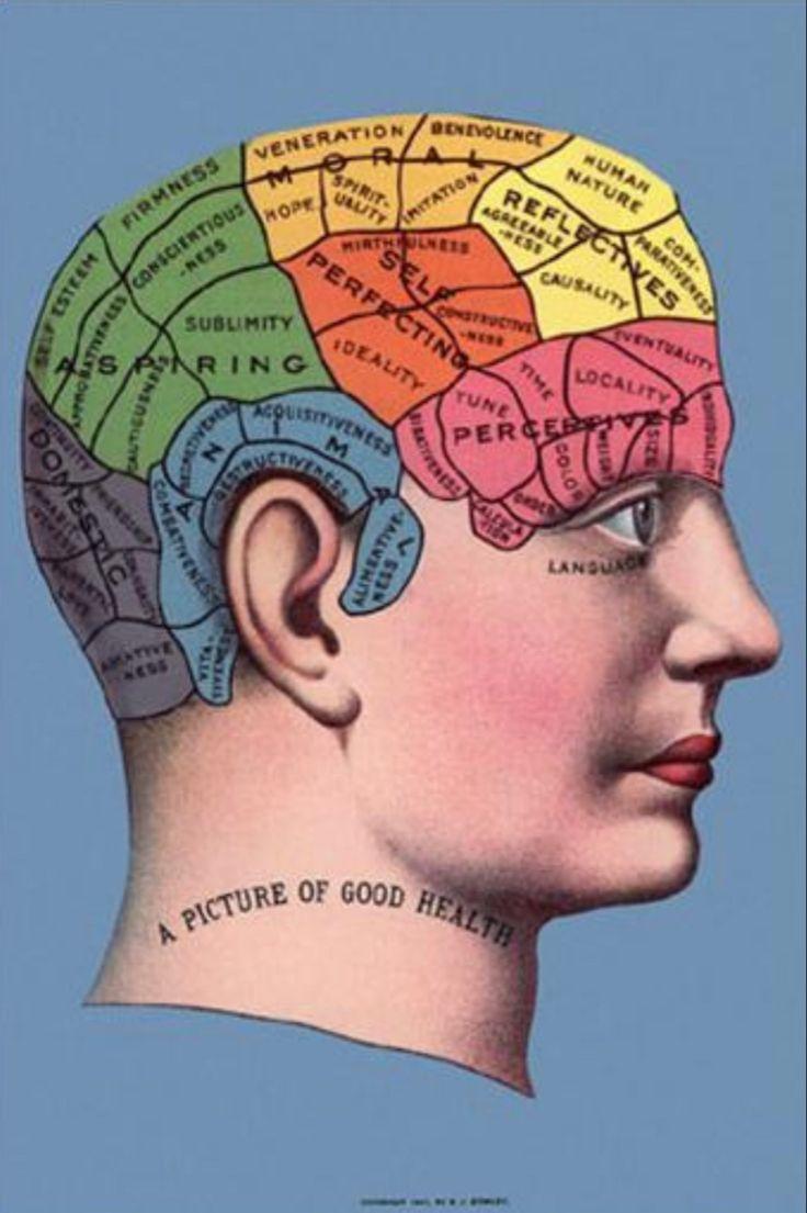 holistic health definition psychology