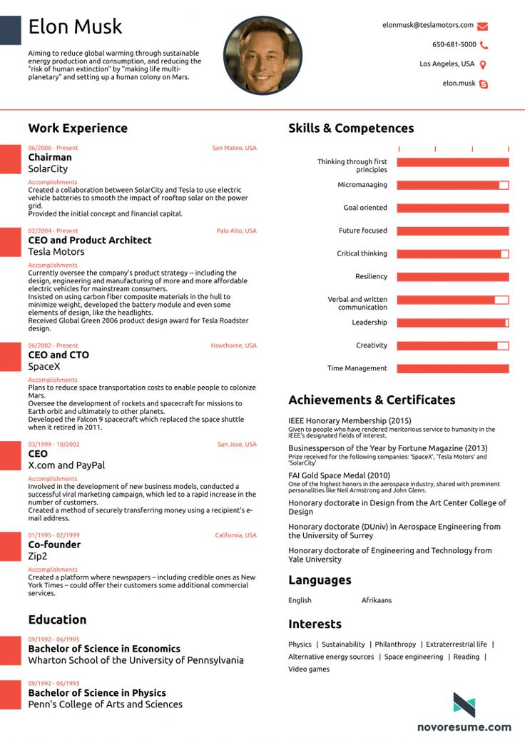 Photo of Elon Musk CV example