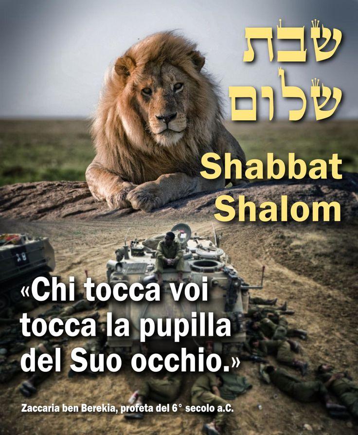 """Auguro un Shabbat di pace a Israele, sotto l'occhio vigile del """"Leone di Giuda"""", secondo la promessa del profeta Zaccaria:  Dice YHWH degli eserciti: """"Chi tocca voi – il popolo ebraico – tocca la pupilla del Suo occhio."""""""