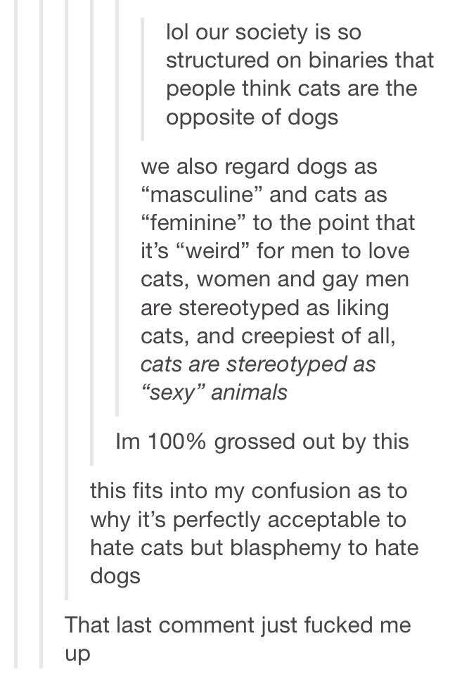 We have GENDERED pets, and gendered stereotypes that those pets fall into. Like, the patriarchy is FUCKED