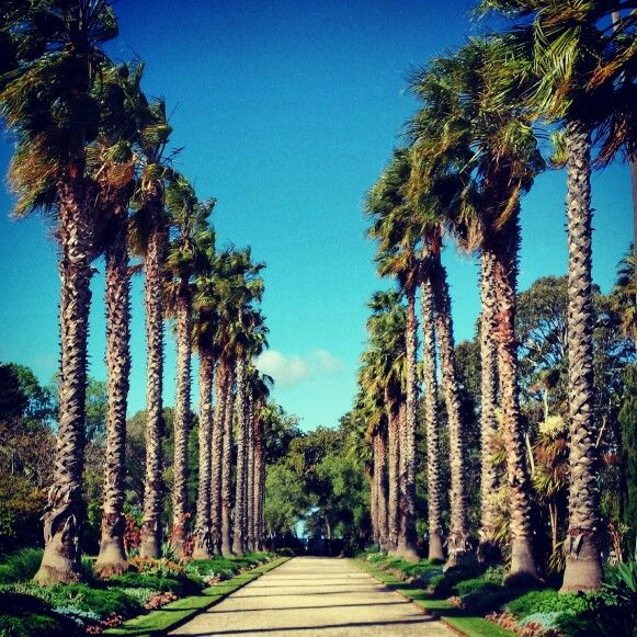 Williamstown botanical gardens, Melbourne Australia