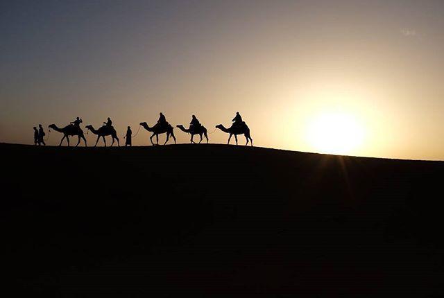 Beauty of the desert. #GastonLuga #anywherewithGL