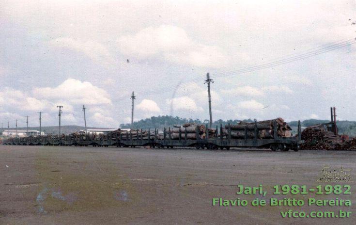 Trem da Estrada de Ferro Jari carregado com madeira nativa no pátio do Pacanarí aguardando locomotiva para conduzi-la à fábrica de celulose